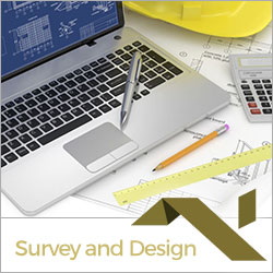 Surveys and Design